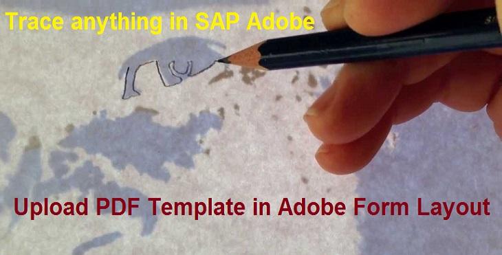 Adobe Interactive Forms Tutorials |