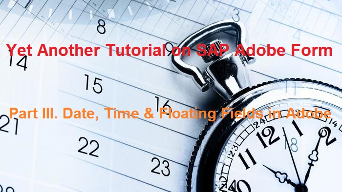 SAP Adobe Interactive Form Tutorial  Part III  Date Time and