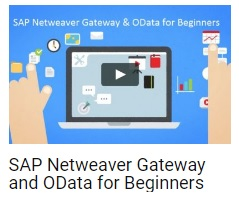 Step by Step Guide on SAP Netweaver Gateway and OData |