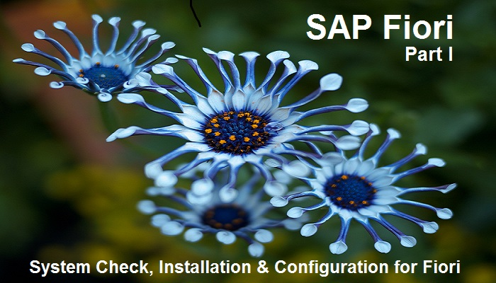 SAP Fiori Tutorial  Part I  System Check, Installation and