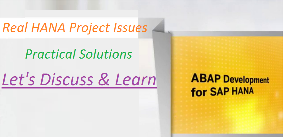 SAP ABAP on HANA Project Experience |