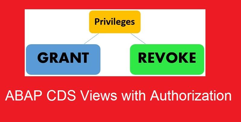Role, Authorization, Privilege, Grant, Revoke in CDS View |